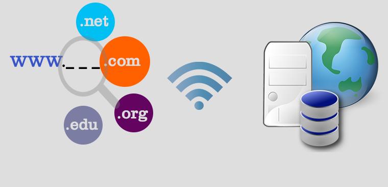 Domain vs Hosting Comparison