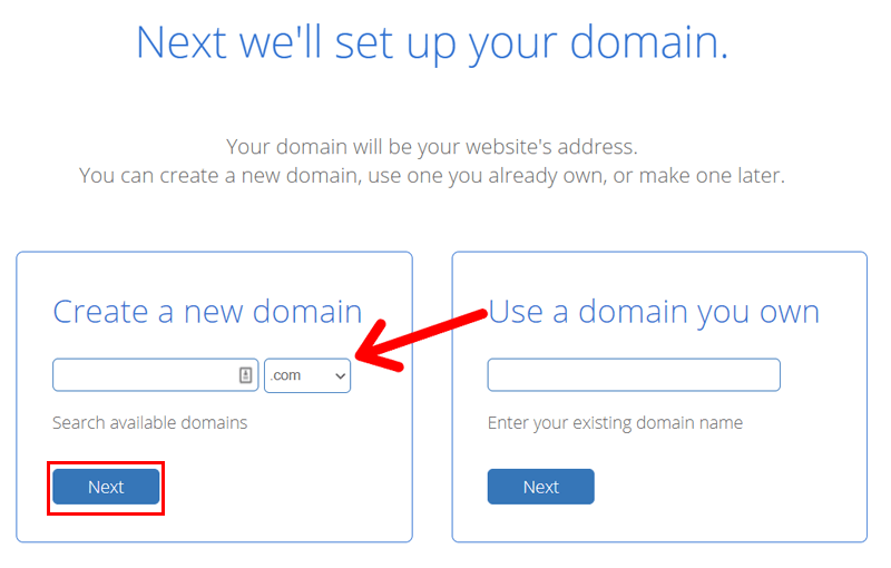 Find Domain Name in Bluehost