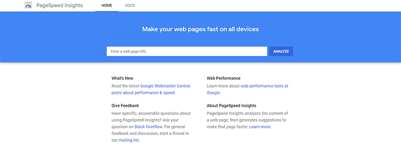 Google PageSpeed Insights Home Page