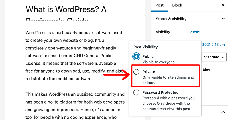 Select Post Visibility Mode - Private