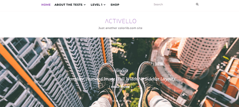 Activello - Best Free Minimalist WordPress Themes
