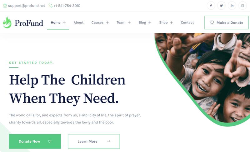 NonprofitProFund WordPress Theme