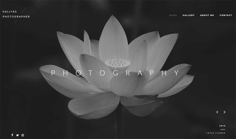 Kallyas Photographer Theme
