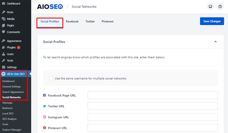 Integration with Social Network in All in One SEO