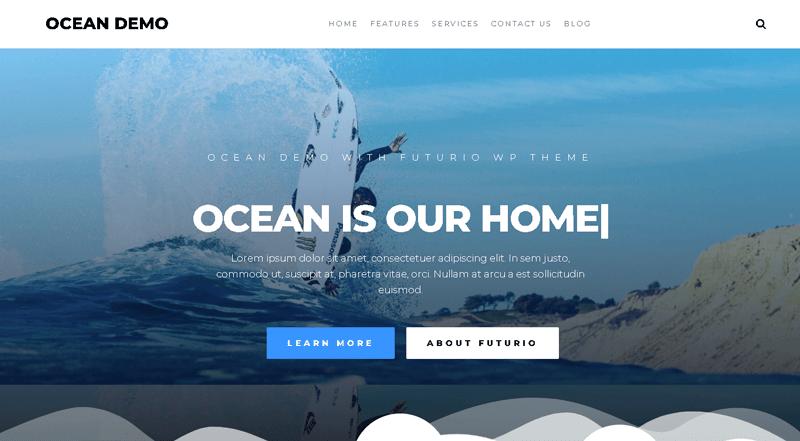 Futurio WordPress Theme