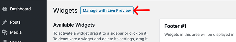 Live Preview Option