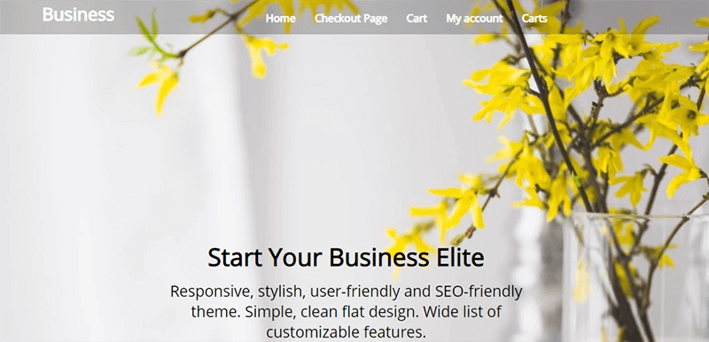 Business Elite Theme