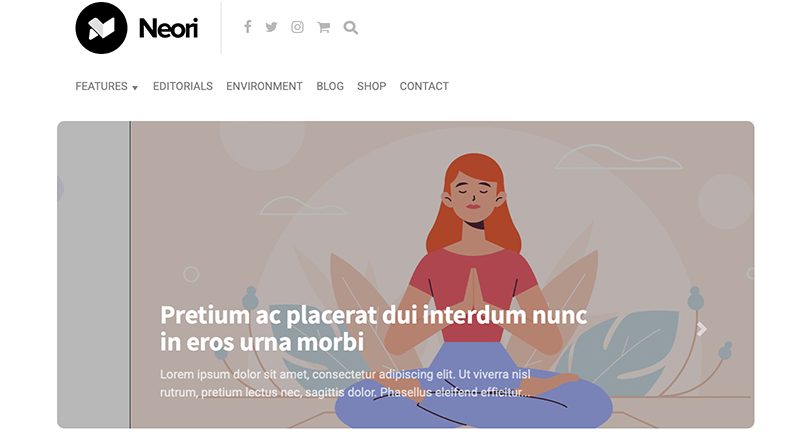Neori Affiliate Marketing WordPress Theme